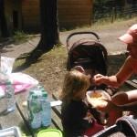 Sortie de fin d'année au zoo d'Ardes sur couze