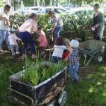 Arrosage de nos plantation au jardin partagé